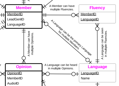 excerpt from entity-relationship diagram showing Language and Fluency tables